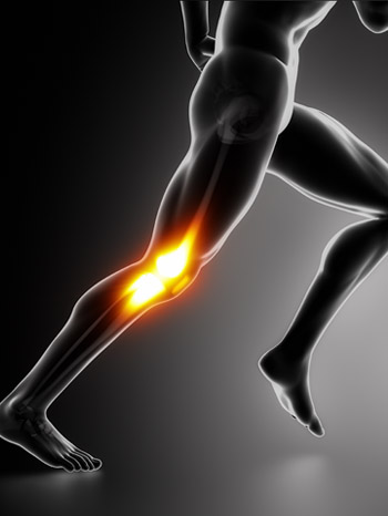 Sports/trauma - ligament and bone injuries